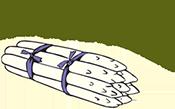 Spargelhof Zein Logo